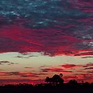 Colorful Botswana sunset! by jozi1