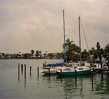 Floridian Boat Dock by godmommy5