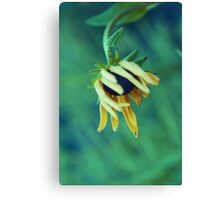 la belle infirme Canvas Print