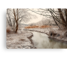 Icy Creek Canvas Print