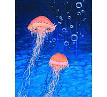 Two Jellyfish Photographic Print