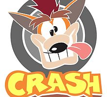 Crash Derp by andrewmess
