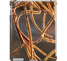 Evening light on Spanish moss iPad Case/Skin