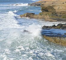 Another View of Sunset Cliffs ~ California by Marie Sharp