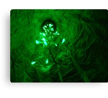 Green trip Canvas Print