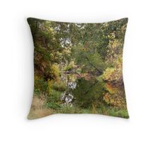 Reflected waters Throw Pillow