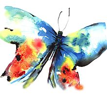 NEW Butterfly Photographic Print