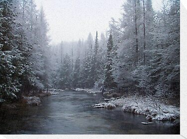Snowy River by Megan Noble