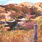 &#x27;Above Hughes Creek&#x27; by Lynda Robinson