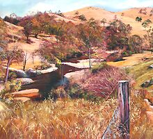 'Above Hughes Creek' by Lynda Robinson