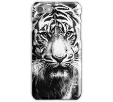 Black and White Tiger Closeup iPhone Case/Skin