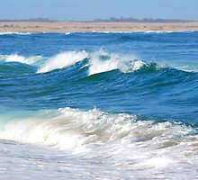 Waves to the Shore - Stockton NSW by Bev Woodman