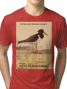 Pied Oystercatcher - Birds of Australia series Tri-blend T-Shirt