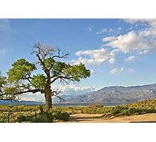Owens Valley, CA. Photographic Print