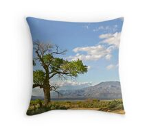 Owens Valley, CA. Throw Pillow