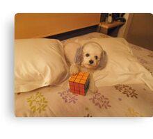 Funny Dog 2 Canvas Print