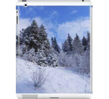 Winter's Arrival iPad Case/Skin