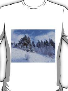 Winter's Arrival T-Shirt