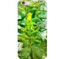Fragrant Foliage iPhone Case/Skin