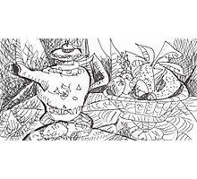 MANGOS AND TEA - STILL LIFE(C2012) Photographic Print