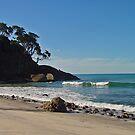 Beach Near Waihi by Robert Abraham
