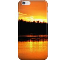Orange Oasis iPhone Case/Skin