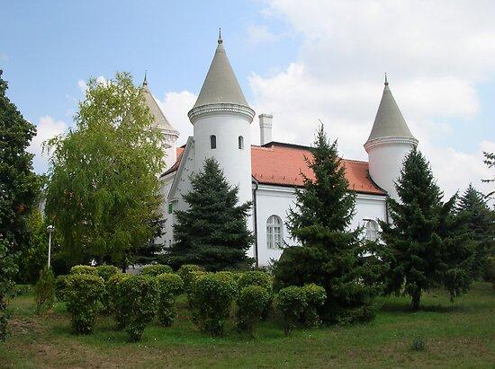 Castle-Bečej by Ana Belaj