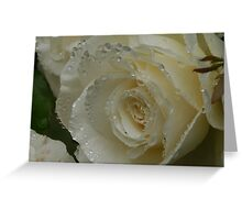Sumer Roses - Misty white bloom Greeting Card