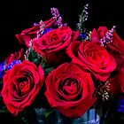 Romantic Red Roses by daphsam