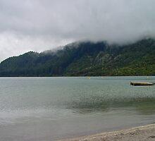 Lake Okataina by Robert Abraham