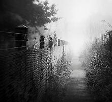 Path by jez92
