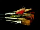 Brushes by Nathalie Chaput