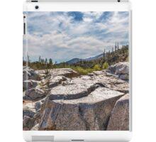 Bumble Bee, Az - Desert Landscape iPad Case/Skin