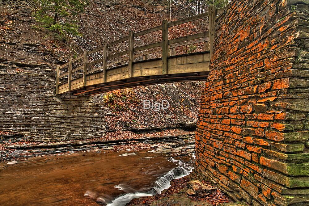 The Wooden Bridge by BigD