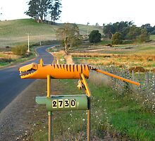 Tasmanian Tiger by Judy O'Neil