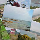 Jersey Scenes by Robert Abraham