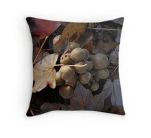Buried srooms Throw Pillow