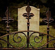 Through the Iron Gates of Life by VLFatum