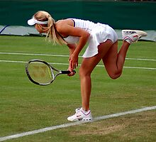 Wimbledon Ladies by Steve Humby