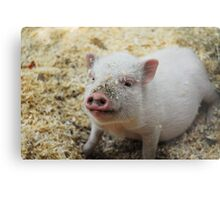 Bacon, I'm not. Metal Print