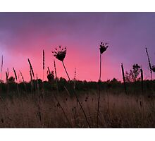Hot Pink Sunset III Photographic Print