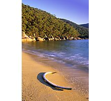 Refuge Coves Whaling Past Photographic Print