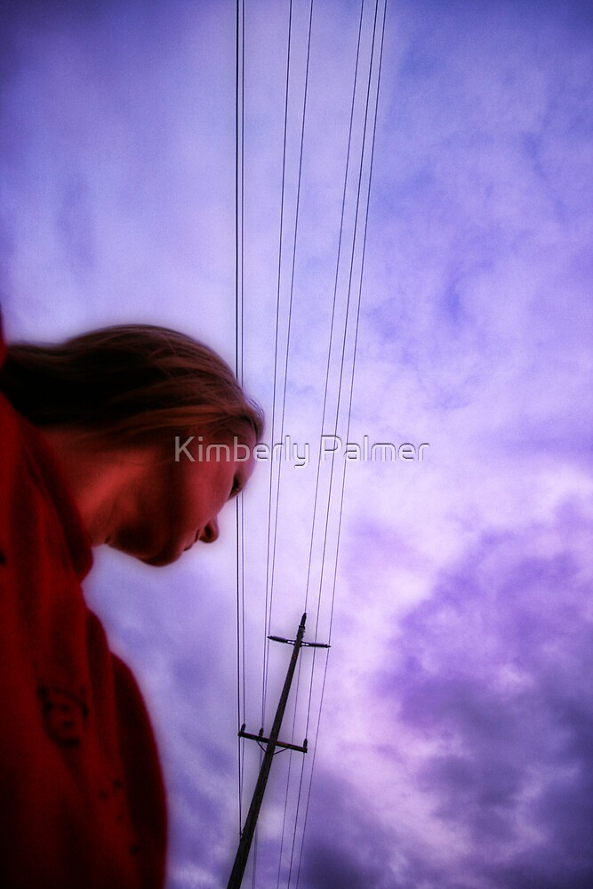 the sky is falling by Kimberly Palmer