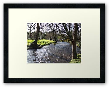 Blarney Castle - River by shanmclean