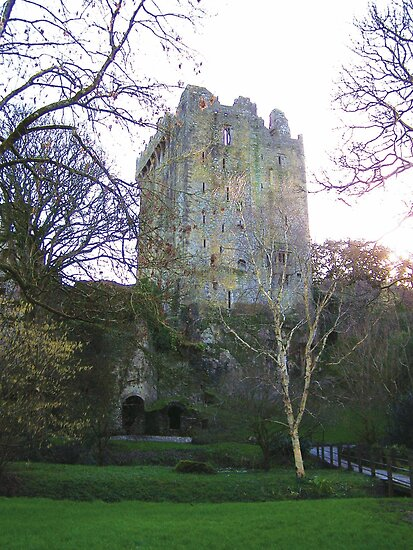 Blarney Castle by shanmclean