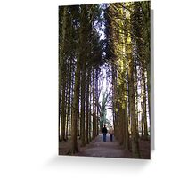 A Walk through in the trees Greeting Card