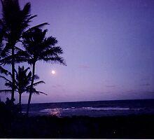Sunset on Kauai by Gary  Crandall
