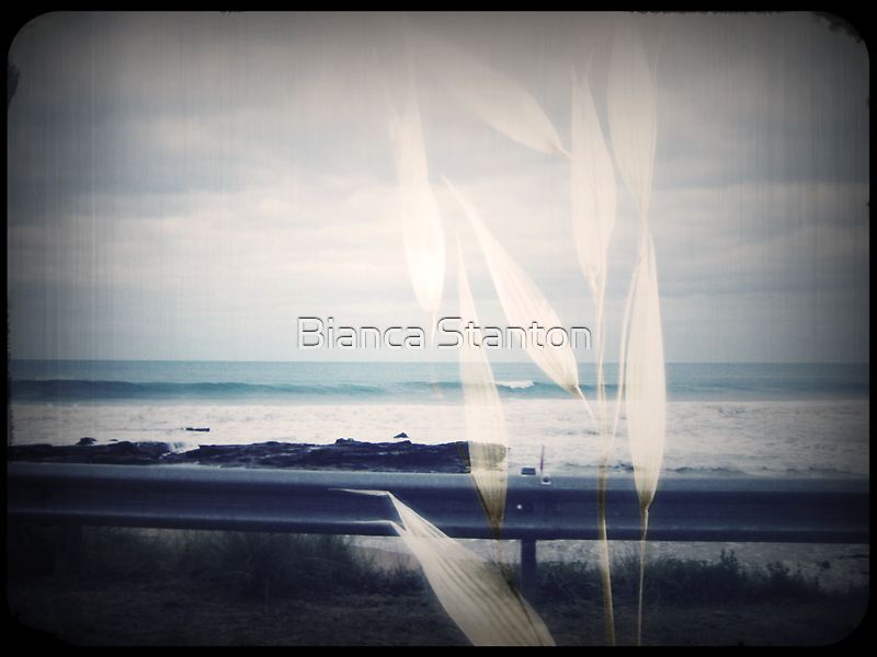 Sea side by Bianca Stanton