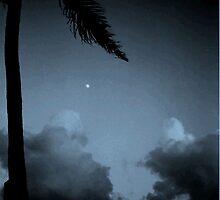 Kauai by Moonlight by Gary  Crandall