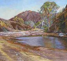 'Brachina Gorge' - Flinders Ranges by Lynda Robinson